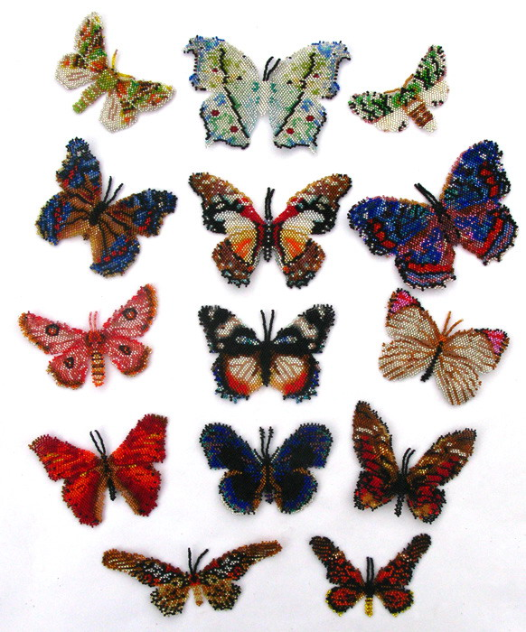 14 African Butterflies and Moths
