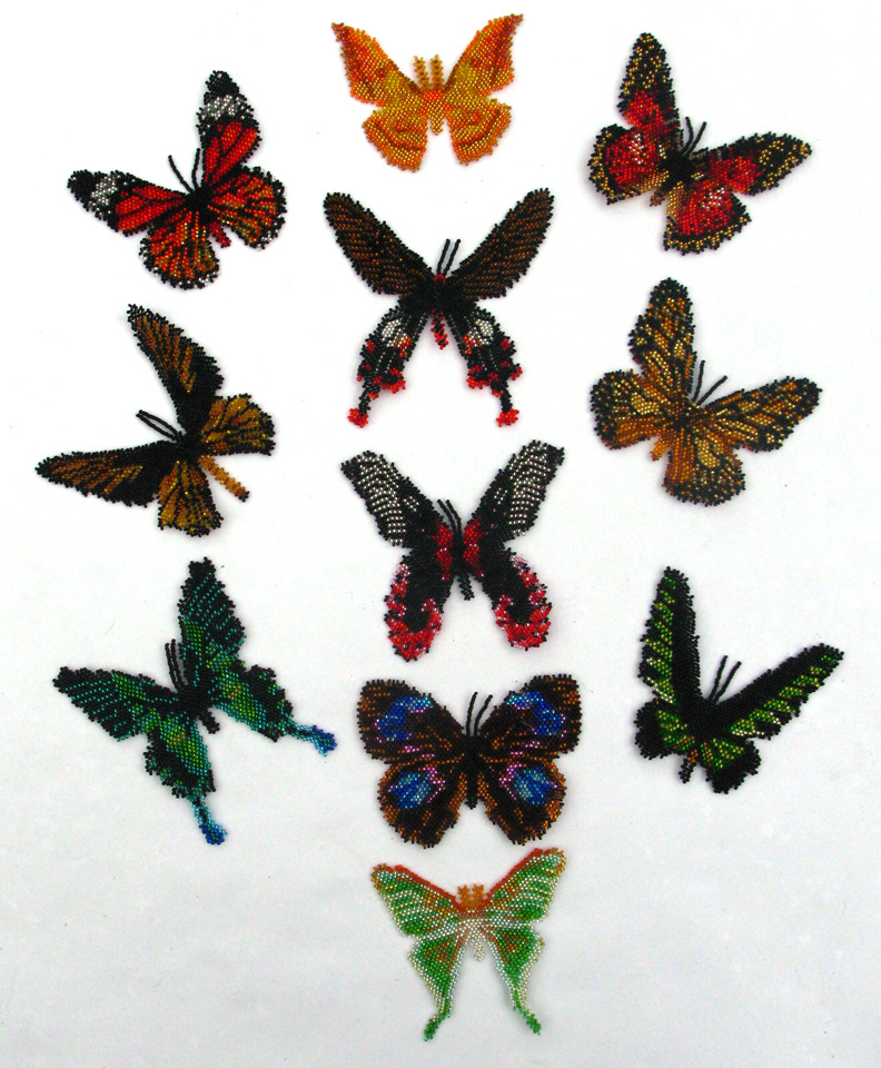 11 Asian Butterflies and Moths