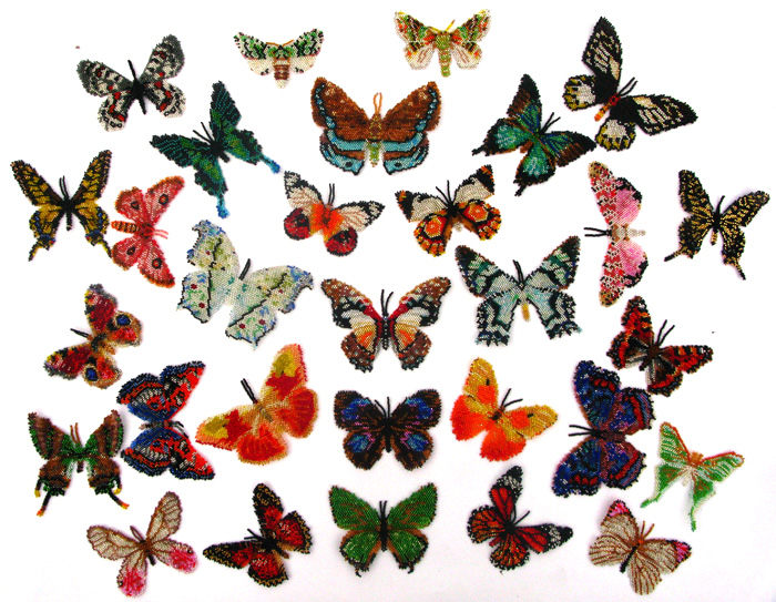 60 Butterflies And Moths Of The World