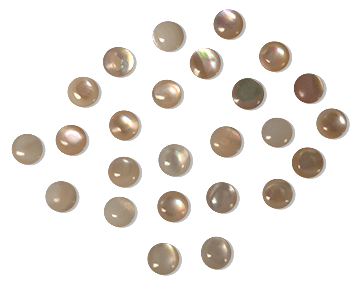 Cabochon, Mother of Pearl, Natural, Round, 6mm (24)