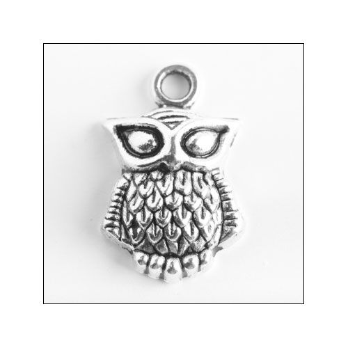 Horned Eye Owl Silver Charm (no bail)