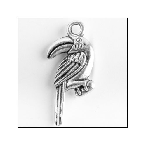 Toucan Bird Silver Charm (no bail)