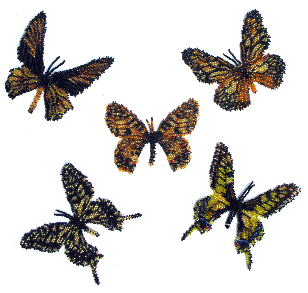 5 Gold and Black Butterflies