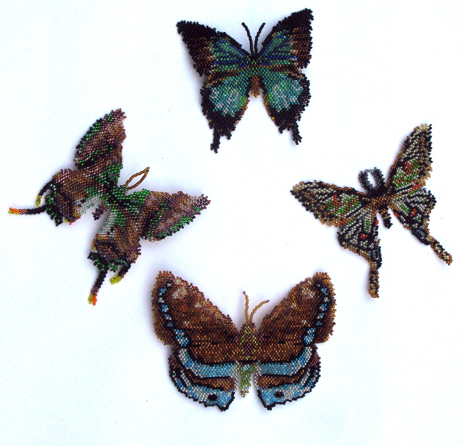 4 Brown and Aqumarine Butterflies and Moths