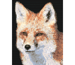 Red Fox (loom)