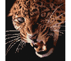 Leopard on the Growl (Loom)