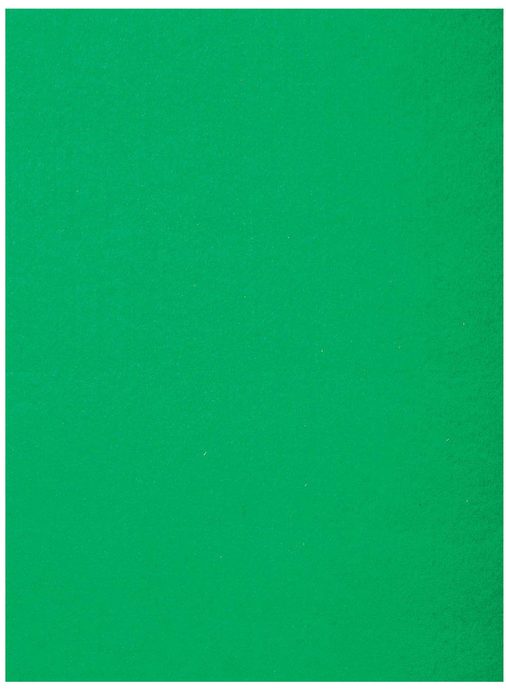 "Stiff Felt 9"" x 12"" x 1.5mm - Kelly Green"