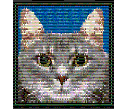 Tabby Cat (Loom/Square)