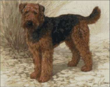 Airedale Terrier - Large Print