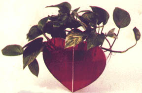 HEART PLANTER (LARGE)