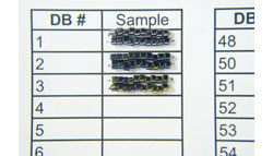 Delica Sample Card Project