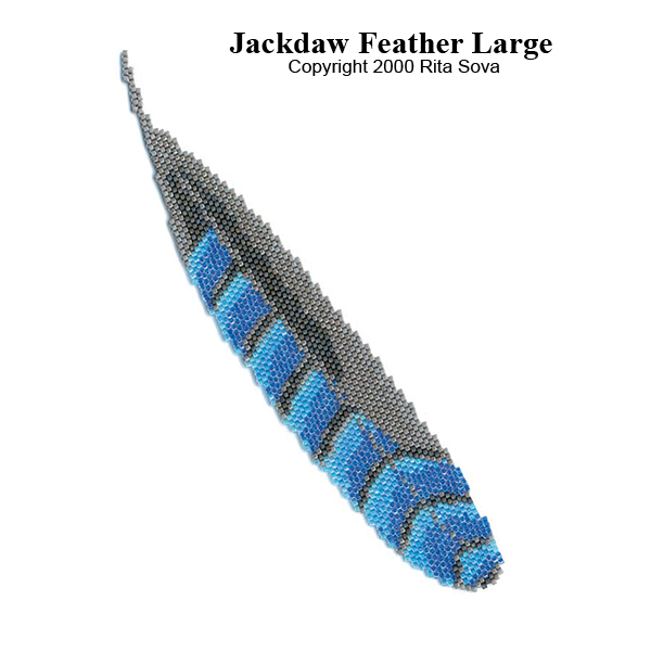 Jackdaw Feather Large