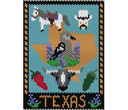 Texas Amulet/Mini Tapestry