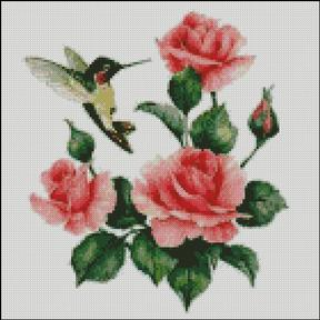 Hummingbird with Roses