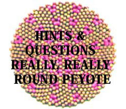 HINTS AND QUESTIONS - REALLY, REALLY ROUND PEYOTE